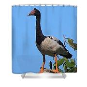 Magpie Goose Shower Curtain