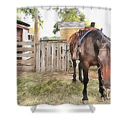 Mahaffie Stagecoach Stop And Farm Shower Curtain