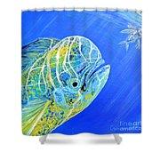 Mahi Mahi And Flying Fish Shower Curtain