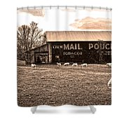 Mail Pouch Tobacco Barn And Sheep Shower Curtain
