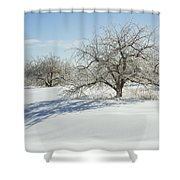 Maine Apple Trees Covered In Ice And Snow Shower Curtain