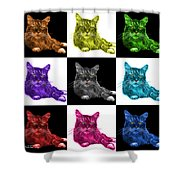 Maine Coon Cat - 3926 - V1 - M Shower Curtain