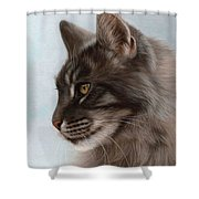Maine Coon Painting Shower Curtain