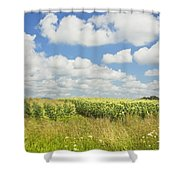 Maine Corn Field In Summer Photo Print Shower Curtain