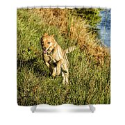 Maisie - Boundless Energy Shower Curtain