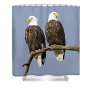 Majestic Beauty  6 Shower Curtain