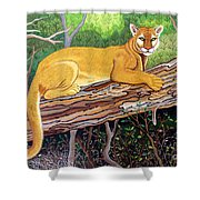 Majestic Hand Embroidery Shower Curtain