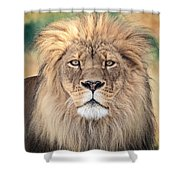 Majestic King Shower Curtain by Everet Regal