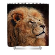 Majestic Lion Shower Curtain by David Stribbling