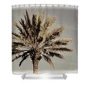 Majestic Palm Shower Curtain