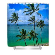 Majestic Palm Trees Shower Curtain