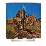 Majestic Saguaro Shower Curtain