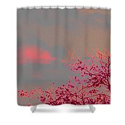 Majestic Skies Shower Curtain