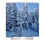 Majestic Winter Wonderland Shower Curtain