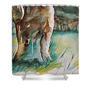 Majestueux Shower Curtain