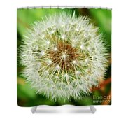 Make A Wish Shower Curtain