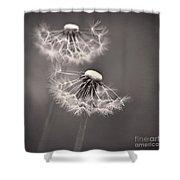make a wish I Shower Curtain