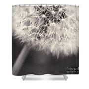 make a wish III Shower Curtain