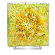 Make A Wish In Greenish Yellow Shower Curtain