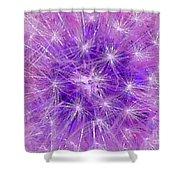 Make A Wish In Purple Shower Curtain