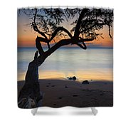 Makena Breeze Shower Curtain