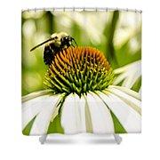 Making Honey Shower Curtain