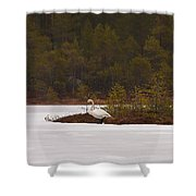 Making Reservations Shower Curtain
