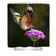 Malay Lacewing On A Flower  Shower Curtain