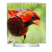 Male Cardinal Close Up - Digital Paint Shower Curtain