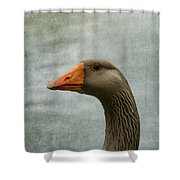 Male Graylag Goose Profile Shower Curtain by Denyse Duhaime