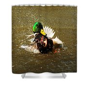Mallard Bath Time Shower Curtain