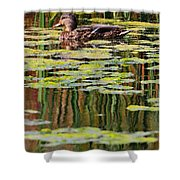Mallard Pond Shower Curtain