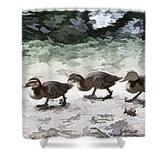 Mama Duckies And Her Babies Shower Curtain