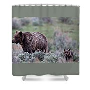 Mama Grizzly Guiding Cub Shower Curtain