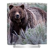 Mama Grizzly Shower Curtain