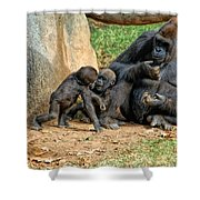 Mama's Little Babies Shower Curtain