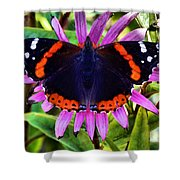 Mammoth Butterfly Shower Curtain