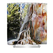 Mammoth Formation Shower Curtain