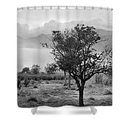 Mammoth World Shower Curtain