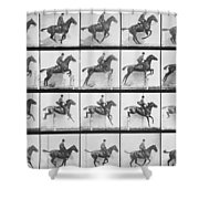Man And Horse Jumping A Fence Shower Curtain by Eadweard Muybridge