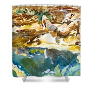 Man And Pool. Florida Shower Curtain
