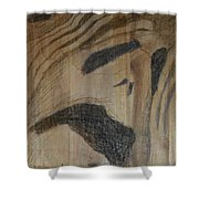 Man Of Sorrows I - Back Shower Curtain