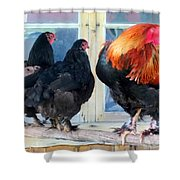 A Very Proud Man With His Two Humble Wives Shower Curtain by Hilde Widerberg