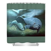 Manatee Madonna Shower Curtain