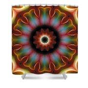 Mandala 101 Shower Curtain
