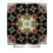 Mandala 113 Shower Curtain