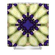 Mandala 118 Shower Curtain