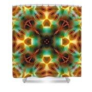 Mandala 133 Shower Curtain