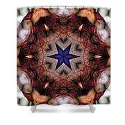 Mandala 14 Shower Curtain by Terry Reynoldson