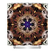 Mandala 16 Shower Curtain